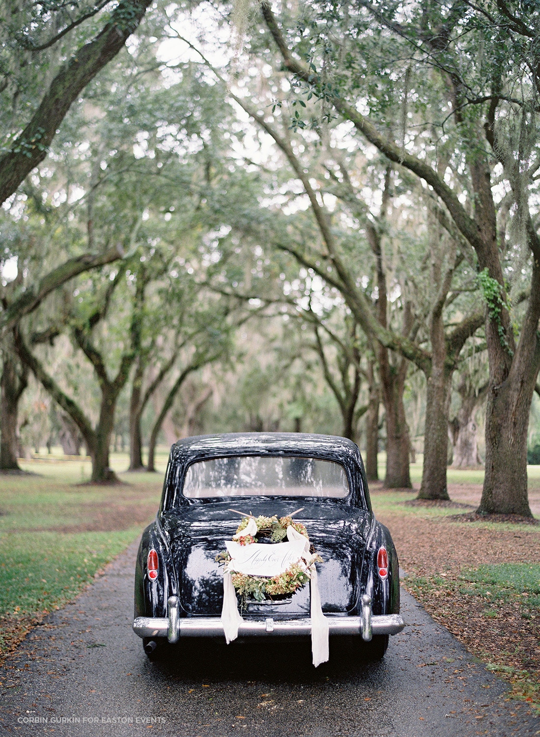 classic wedding car exit through oak trees in charleston