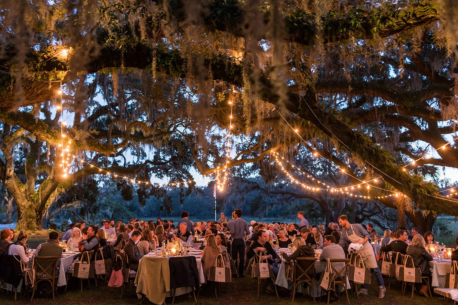 wedding under the oaks at kiawah river development